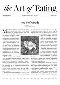 No. 24 Into the Woods